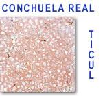 Conchuela Real